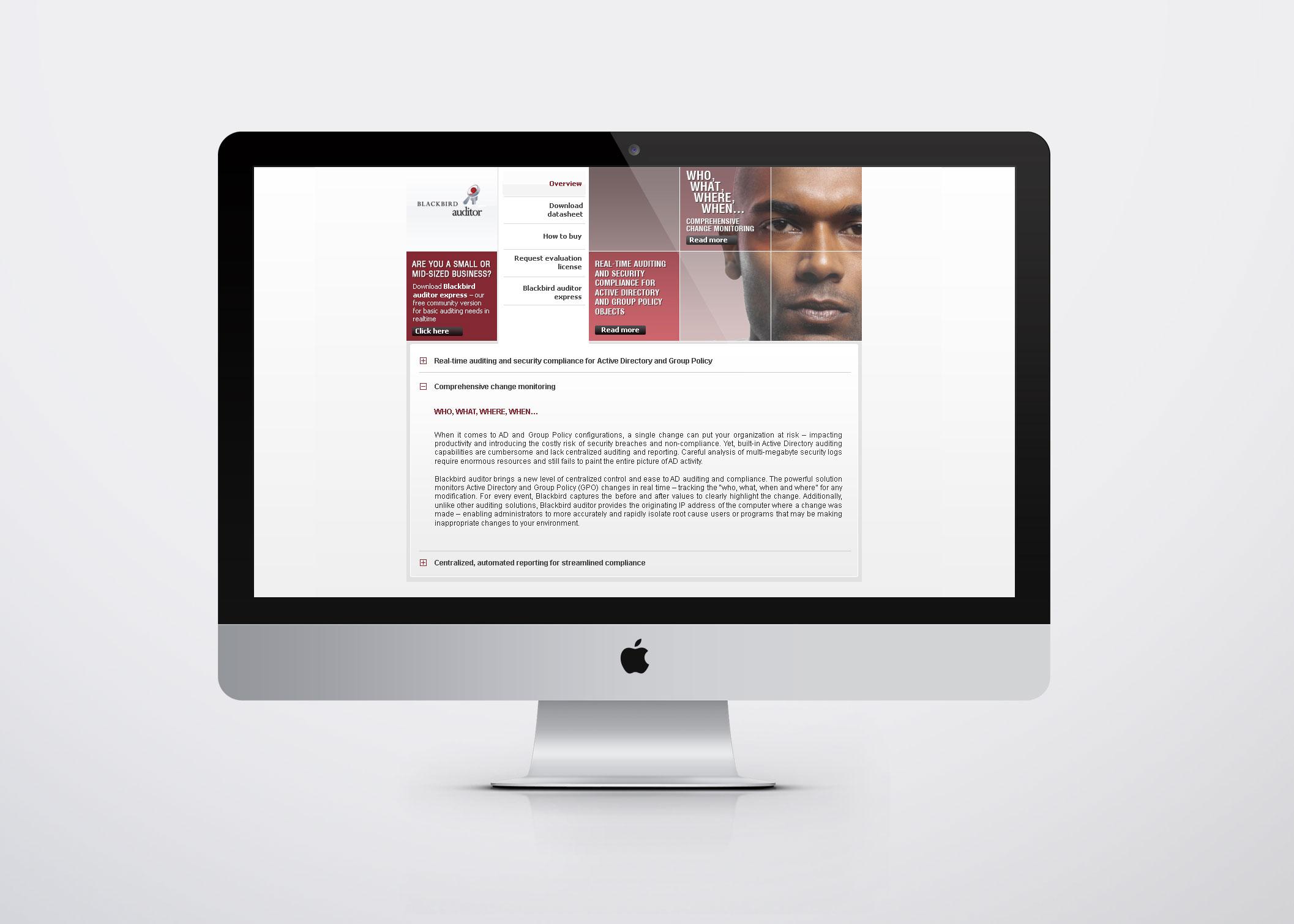 Software Company Visual Identity Visual Identity