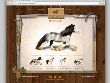 Horse Farm Website Design